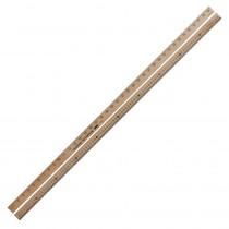 CTU7605 - Meter Stick in Rulers