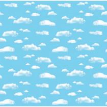 PAC12850 - Corobuff Clouds 12-1/2 Ft Roll in Bulletin Board & Kraft Rolls
