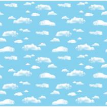 PAC56465 - Fadeless 48 X 50 Roll Cloud Boxed in Bulletin Board & Kraft Rolls