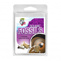 AEP2968 - Explore With Me Oceanic Fossils in Earth Science