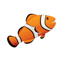 ASH10036 - Magnetic Whiteboard Eraser Clown Fish 3-1/2 X 3-1/2 in Whiteboard Accessories