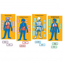 CD-110178 - Human Body Bulletin Board Set in Science