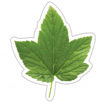 CD-120568 - Woodland Whimsy Green Leaf Cut-Outs in Accents