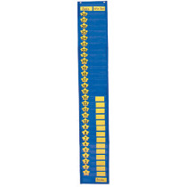 CD-5611 - Pocket Chart Two-Column Graphing 9 X 60 in Pocket Charts