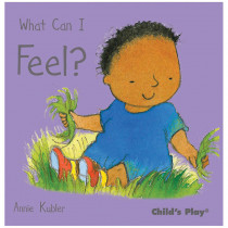 CPY9781846433740 - What Can I Feel in Classroom Favorites