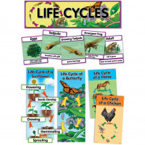 CTP1764 - Life Cycles Mini Bulletin Board Set in Science