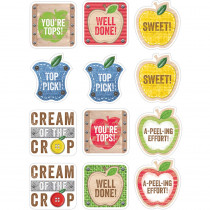 CTP4730 - Apple Reward Stickers Upcycle Style in Stickers