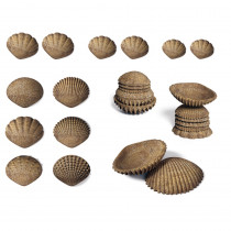 Tactile Shells, Set of 36 - CTU15205 | Learning Advantage | Sensory Development