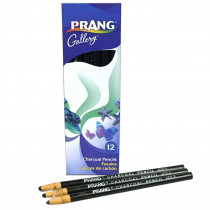 DIX60200 - Peel Off Charcoal Pencil Pk Of 12 Sold As A Dozen Soft Grade in Colored Pencils