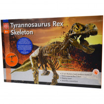 EE-EDU37329 - T-Rex Skeleton in Animal Studies