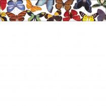 EP-583 - Butterflies & Moths Photo Border in Border/trimmer