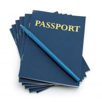 My Passport Book 12 Books