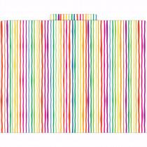 LAS1309F - Functional File Folders Stripes in Folders
