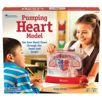 LER3535 - Pumping Heart Model in Human Anatomy