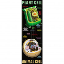 MC-V1632 - Plant And Animal Cells in Plant Studies