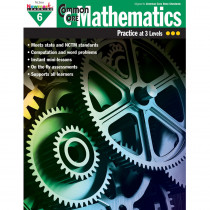 NL-1309 - Common Core Mathematics Gr 6 in Activity Books