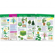 NP-943501 - All About Plants Set Of 5 in Science
