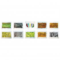 Wild Animals Rubbing Plates, Set of 10 - R-48240 | Roylco Inc. | Rubbing Plates