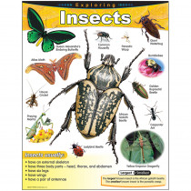 T-38184 - Chart Exploring Insects Gr 1-5 in Science