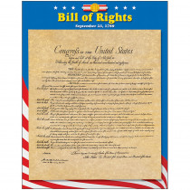 T-38276 - Learning Chart Bill Of Rights in Social Studies