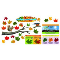 T-8602 - Why Leaves Change Color Mini Bulletin Board Set in Science