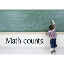 T-A67237 - Math Counts in Math