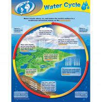 TCR7743 - Water Cycle Chart in Science