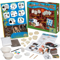 YS-WH9251136 - Science On A Tracking Expedition in Activity Books & Kits