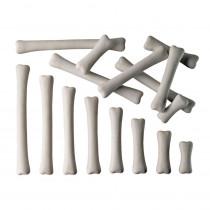 YUS1033 - Dinosaur Bones Match & Measure Set in General