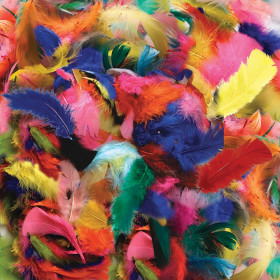 Turkey Plumage Feathers, Hot Colors Assorted, Assorted Sizes, 14 grams
