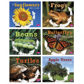 Explore Life Cycles St Of 6 Books
