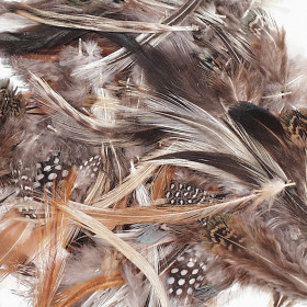 Natural Feathers, Natural Assorted Colors, Assorted Sizes, 1/2 oz.