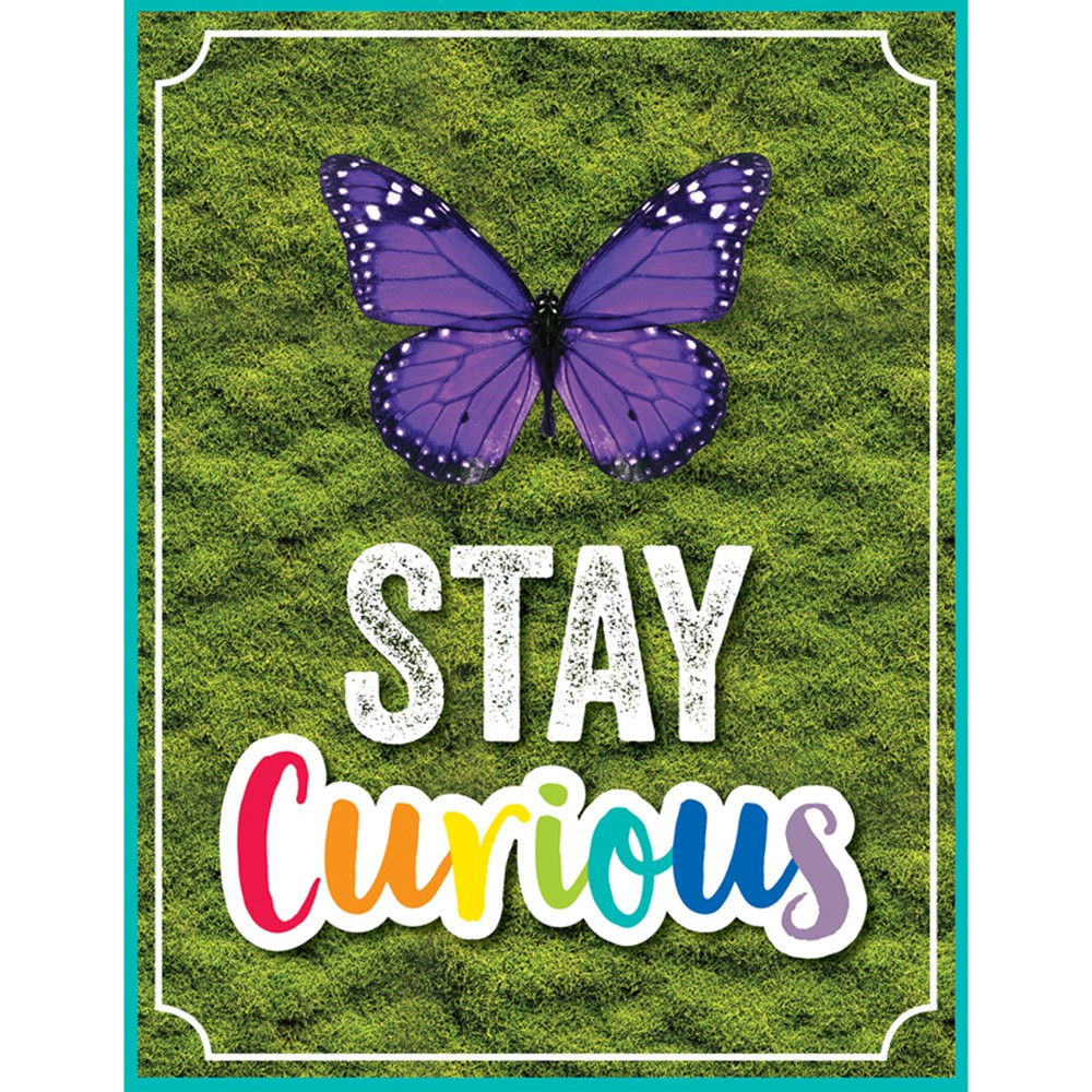 CD-114274 - Woodland Whimsy Stay Curious Chart in Classroom Theme