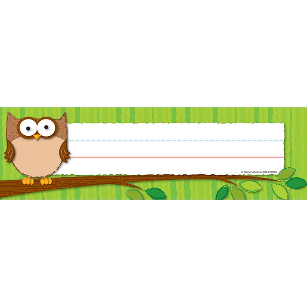 CD-122016 - Owls Desk Nameplates in Name Plates