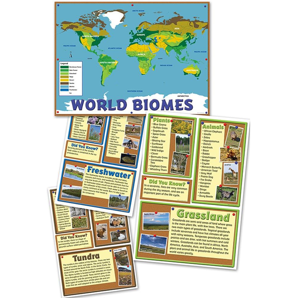 World Biomes Bulletin Board Set