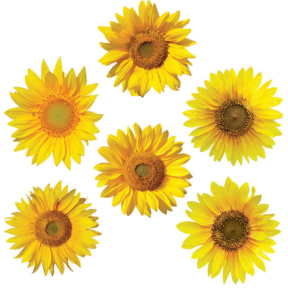 EP-3182 - Sunflowers Accents in Accents