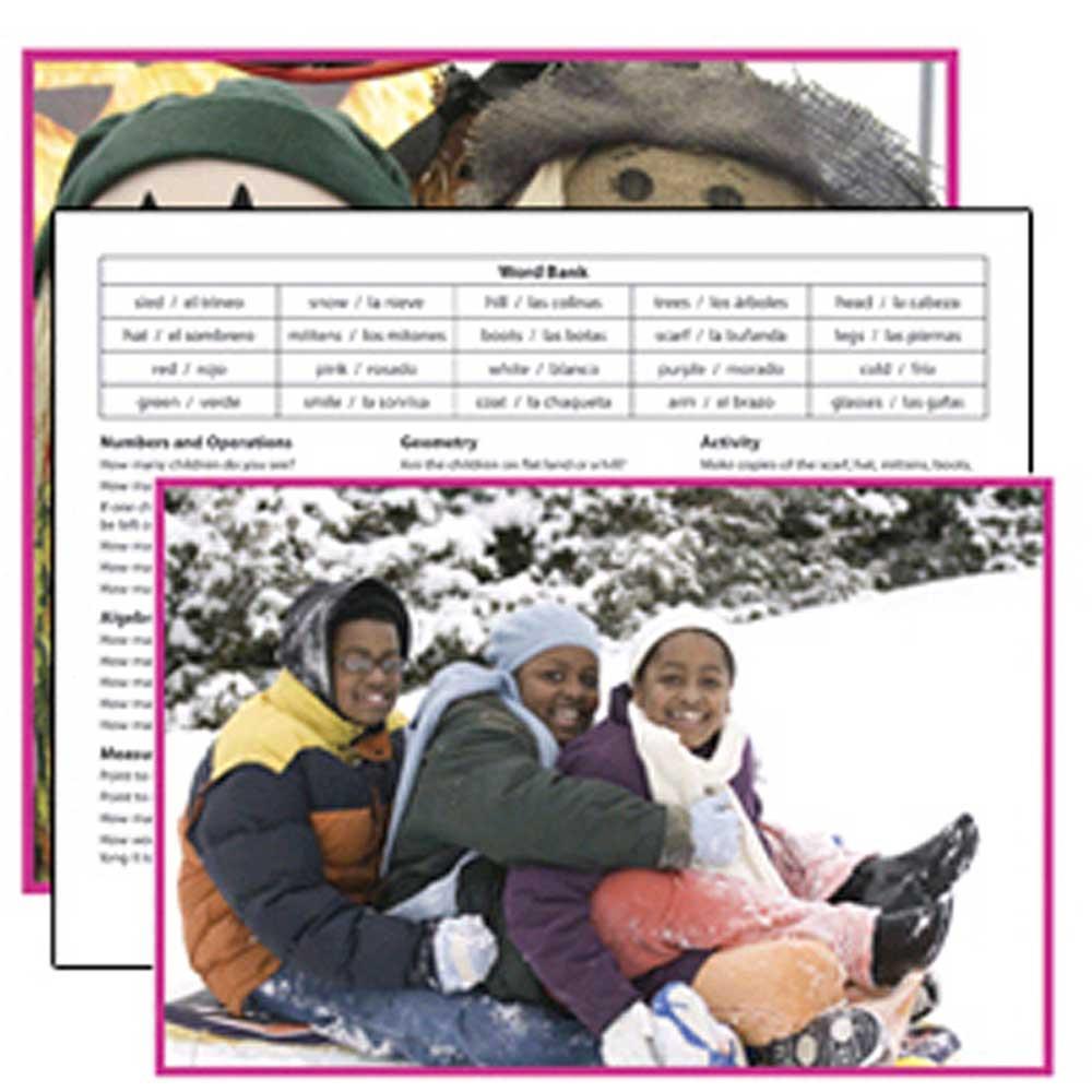 EP-3475 - Seasons Literacy Cards in Reading Skills