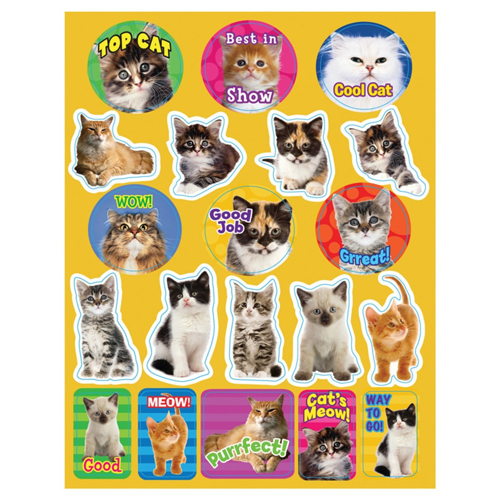 EU-655202 - Motivational Cats Theme Stickers in Stickers