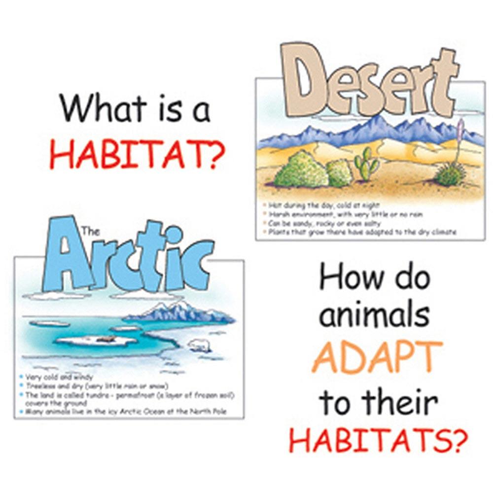 EU-84753 - Bb Set Animal Habitats in Science