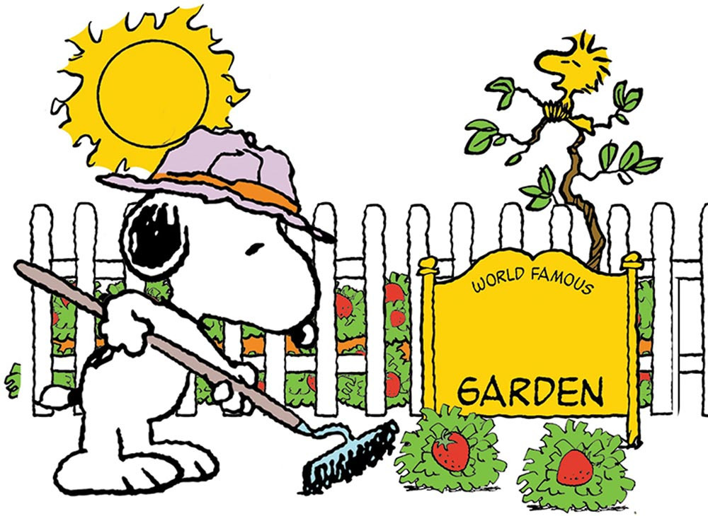 EU-847686 - Snoopy Spring Strawberry Patch Bb St in Classroom Theme