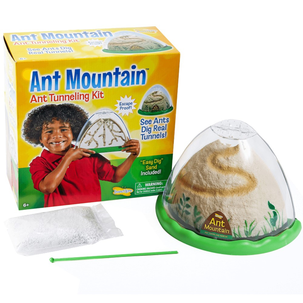 ILP5510 - Ant Mountain in Animal Studies