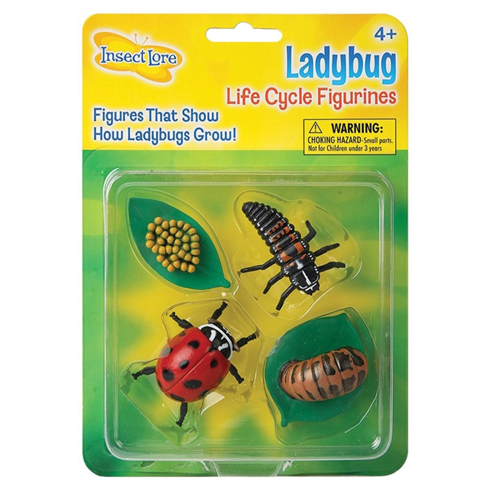 ILP6090 - Ladybug Life Cycle Stages in Animal Studies