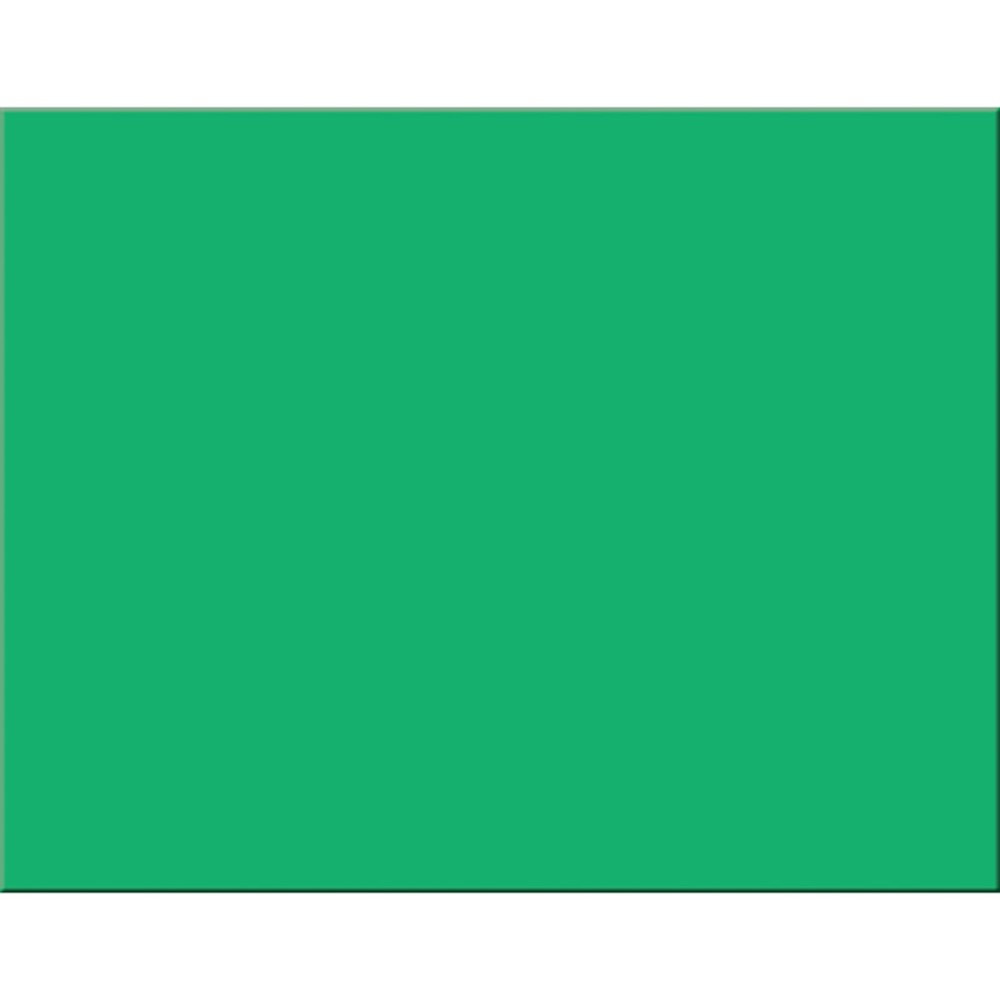 PAC54941 - Peacock Holiday Green 25Ct 6 Ply 22X28 Poster Board in Poster Board