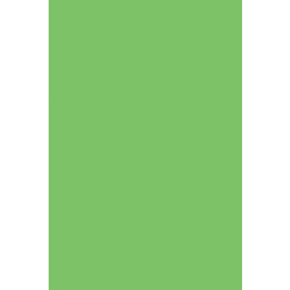 PAC59112 - Spectra Quires Spring Green in Tissue Paper