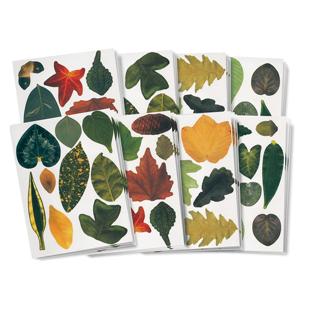 R-15334 - Paper Leaves in Craft Paper