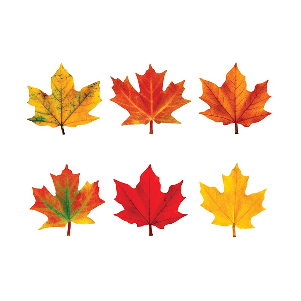 T-10836 - Classic Accents Maple Leaves Mini Variety Pk-Discovery in Holiday/seasonal
