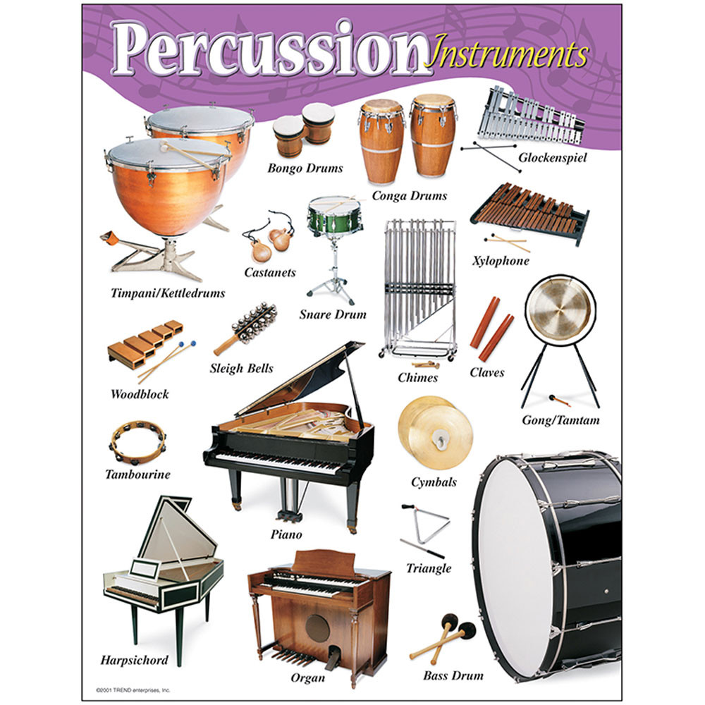 T-38102 - Chart Percussion Instruments Gr K-8 17 X 22 in Miscellaneous