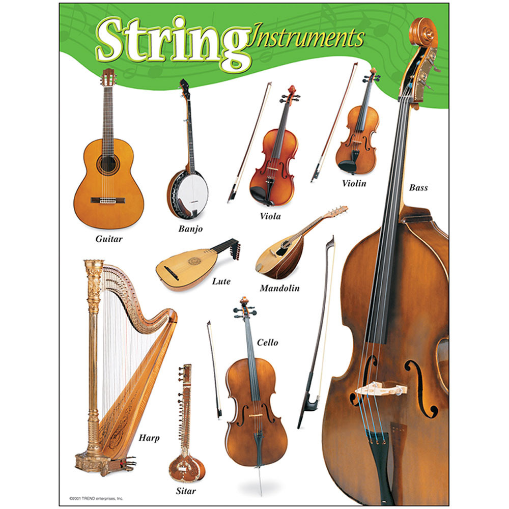 T-38103 - Chart String Instruments Gr K-8 17 X 22 in Miscellaneous