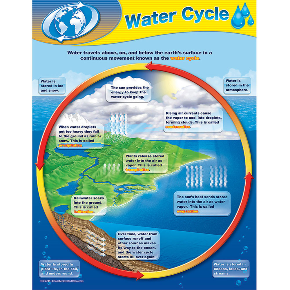 Water cycle chart tcr7743 teacher created resources water cycle chart ccuart Gallery