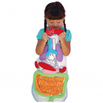 ATC008734 - Anatomy Apron in Human Anatomy